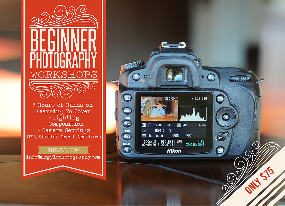 2014 Begginer photography class ad web size copy